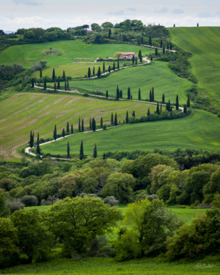 Travel Photograph: Val d'Orcia by Nat Coalson