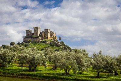 Travel Photograph: Almodovar Castle