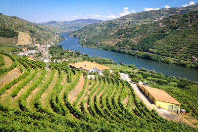 Douro Valley by Nat Coalson