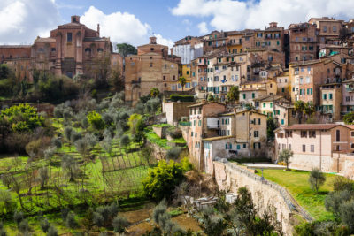 Siena, Toscana, Italia - small, private vineyards catch the midday sun, surrounded by ancient stone walls of the medieval capital of Tuscany.