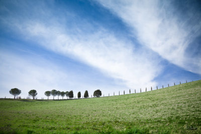 Tuscany, Italy - a row of trees adorns a green hillside, under a dramatic sky of deep blue and white, streaky clouds.